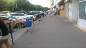 Bucharest weather in June