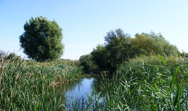 Bucharest Delta Natural Beauty lake
